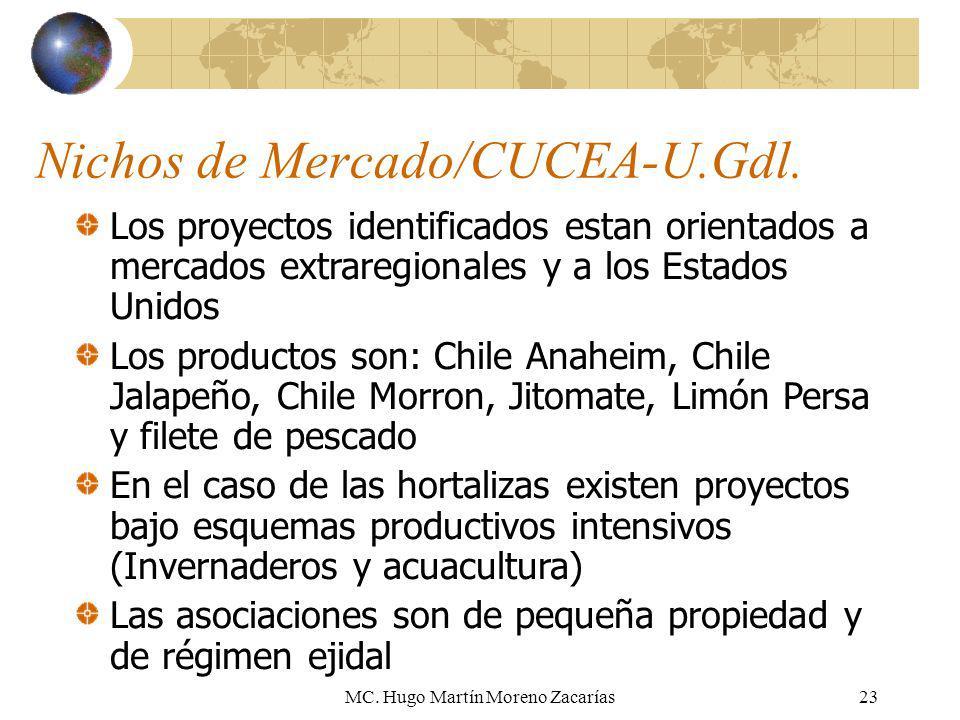 MC. Hugo Martín Moreno Zacarías23 Nichos de Mercado/CUCEA-U.Gdl. Los proyectos identificados estan orientados a mercados extraregionales y a los Estad