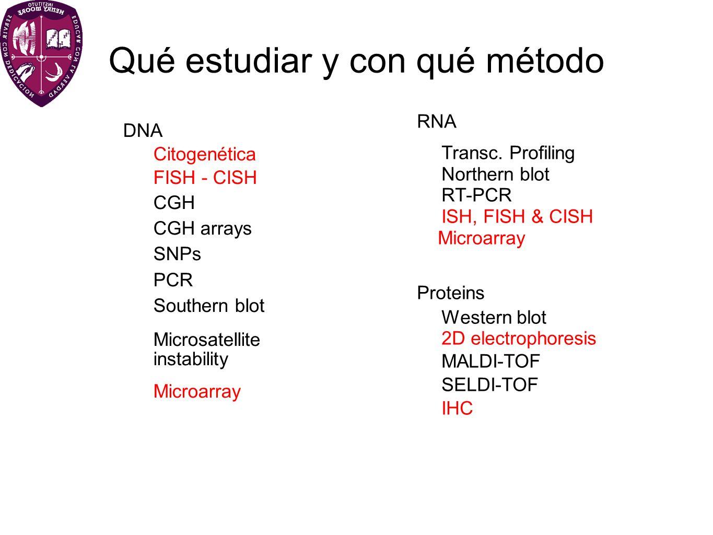 Qué estudiar y con qué método DNA Citogenética FISH - CISH CGH CGH arrays SNPs PCR Southern blot Microsatellite instability Microarray RNA Transc. Pro