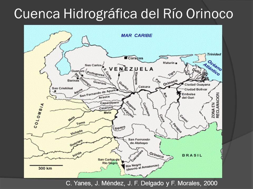 Cuenca Hidrográfica del Río Orinoco C. Yanes, J. Méndez, J. F. Delgado y F. Morales, 2000
