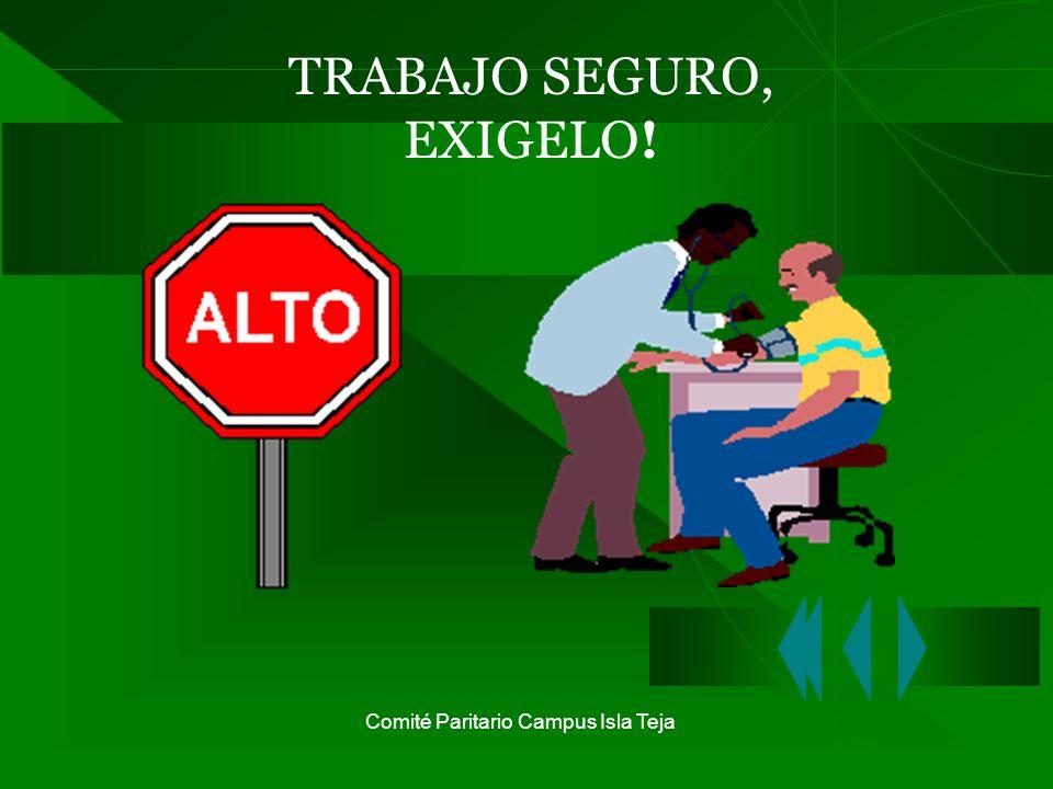 Comité Paritario Campus Isla Teja TRABAJO SEGURO, EXIGELO!