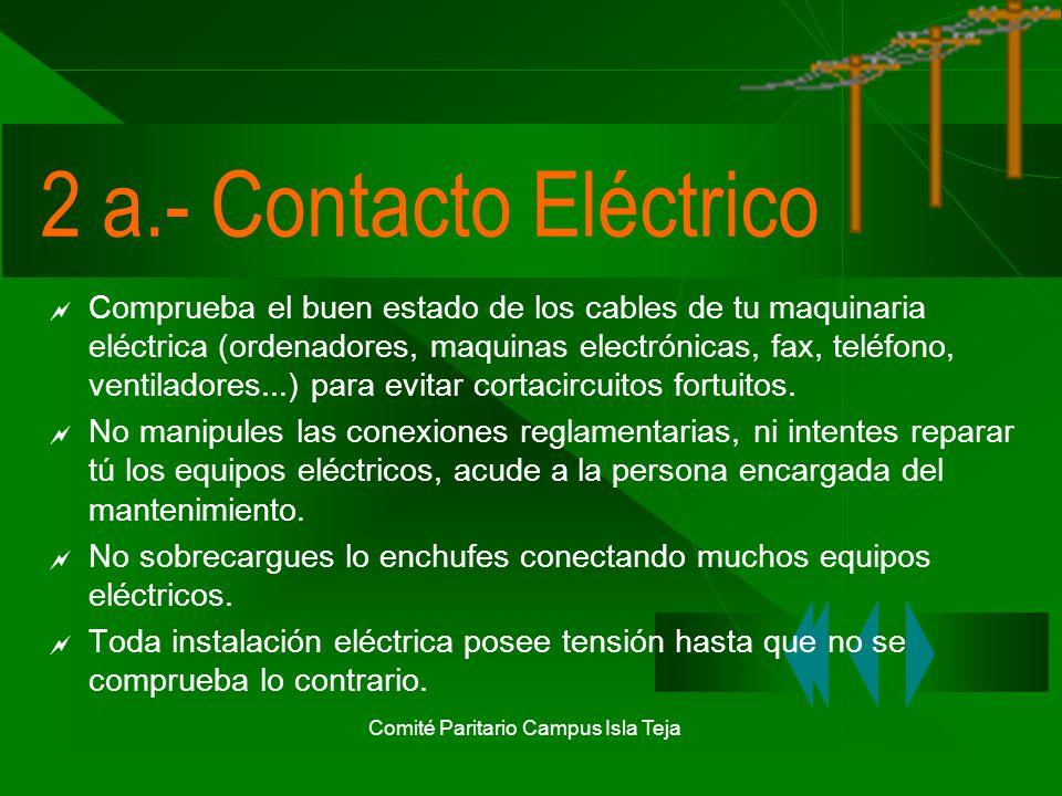 Comité Paritario Campus Isla Teja El Computador Pantalla.