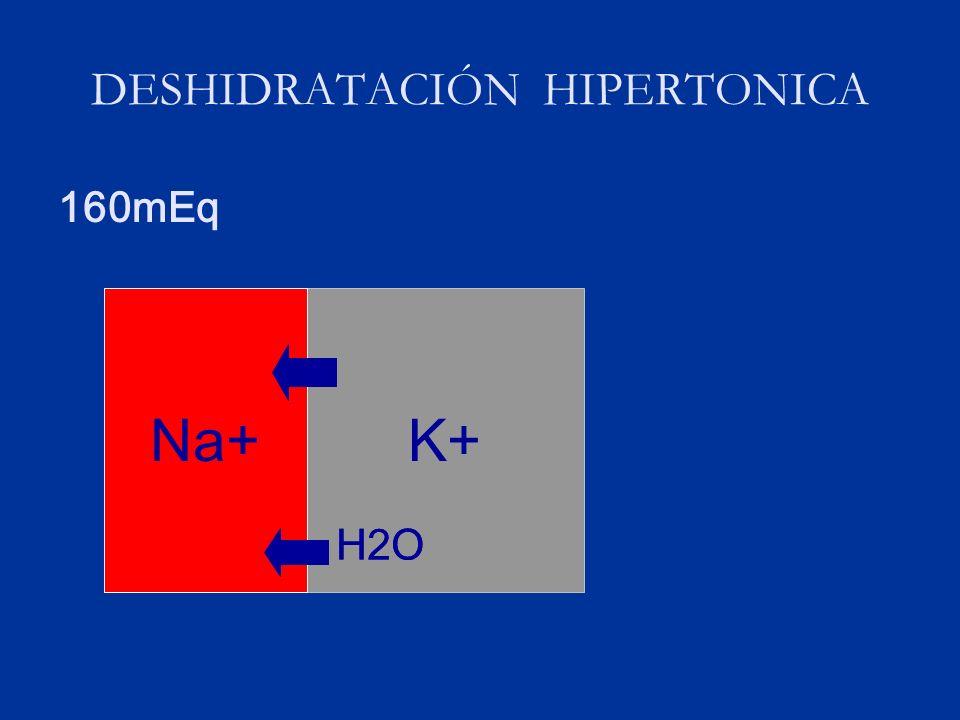 DESHIDRATACIÓN HIPERTONICA 160mEq K+Na+ H2O Na+ H2O
