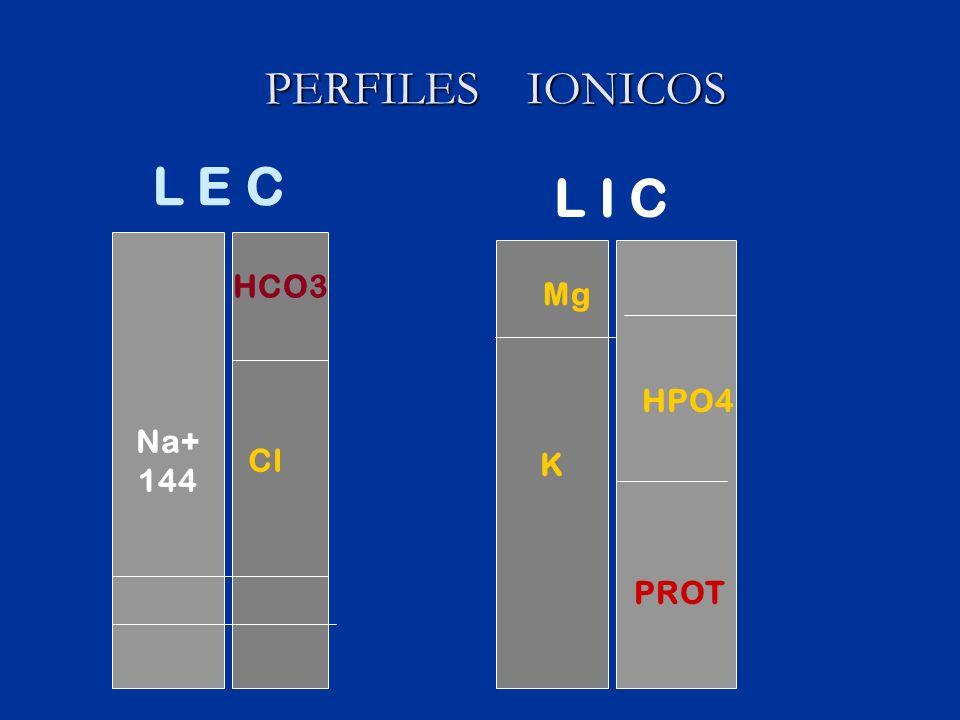 PERFILES IONICOS Na+ 144 HCO3 Cl L E C K L I C Mg HPO4 PROT