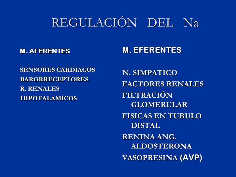 REGULACIÓN DEL Na REGULACIÓN DEL Na M.AFERENTES SENSORES CARDIACOS BARORRECEPTORES R.