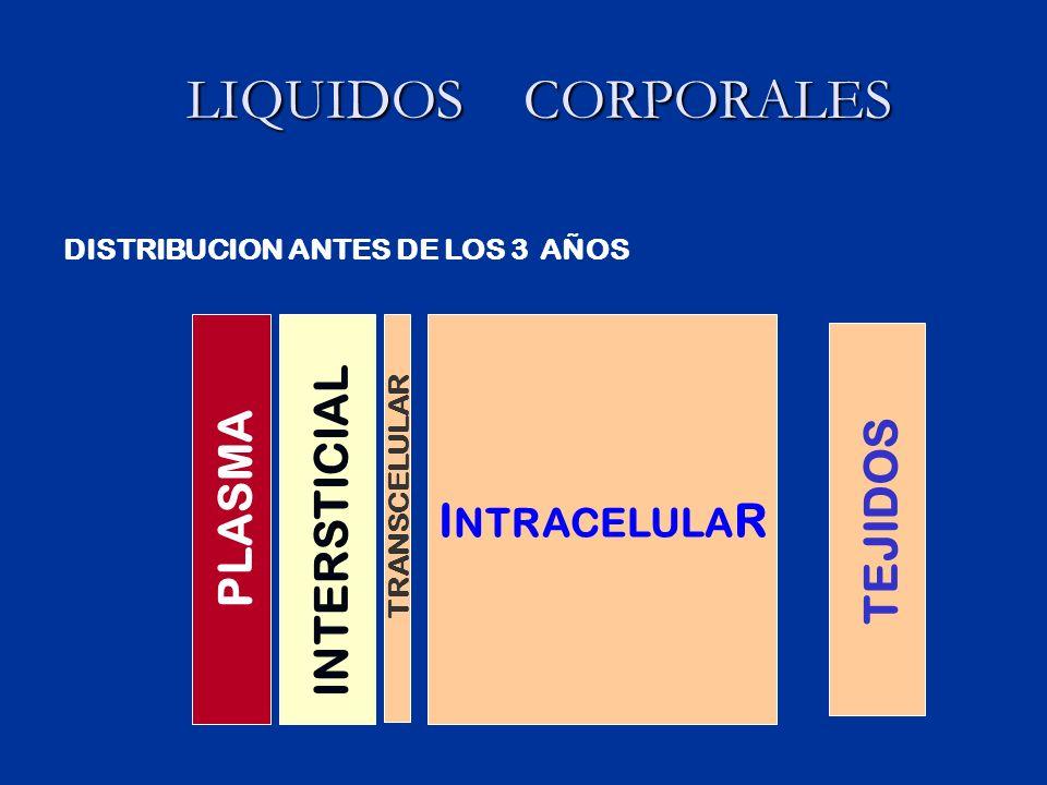 LIQUIDOS CORPORALES LIQUIDOS CORPORALES I NTRACELULA R PLASMA INTERSTICIAL TRANSCELULAR TEJIDOS DISTRIBUCION ANTES DE LOS 3 AÑOS