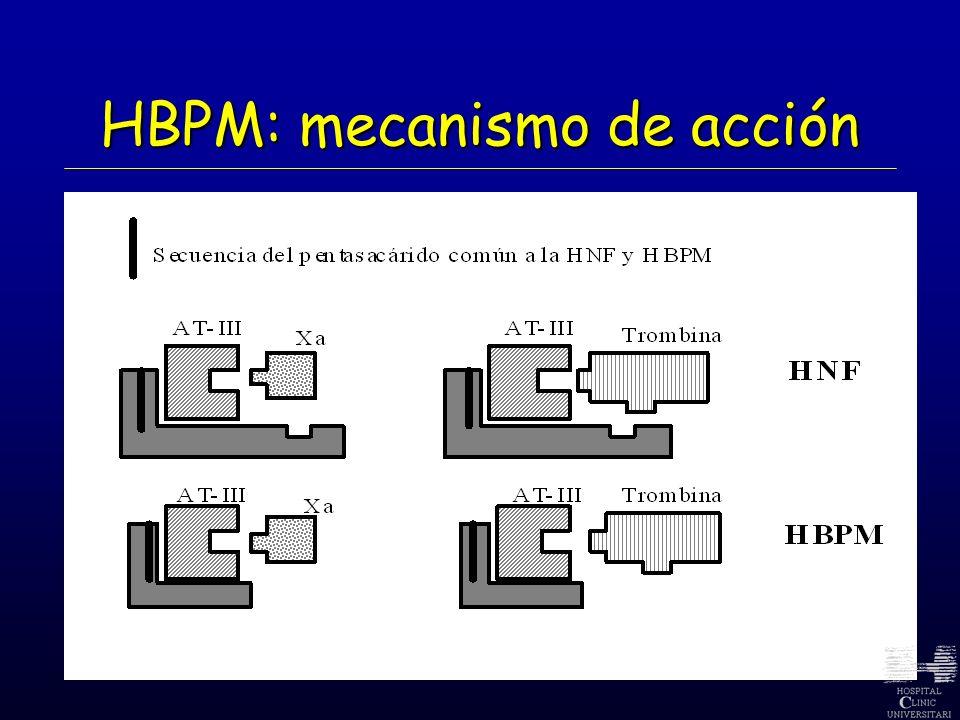 HBPM: mecanismo de acción