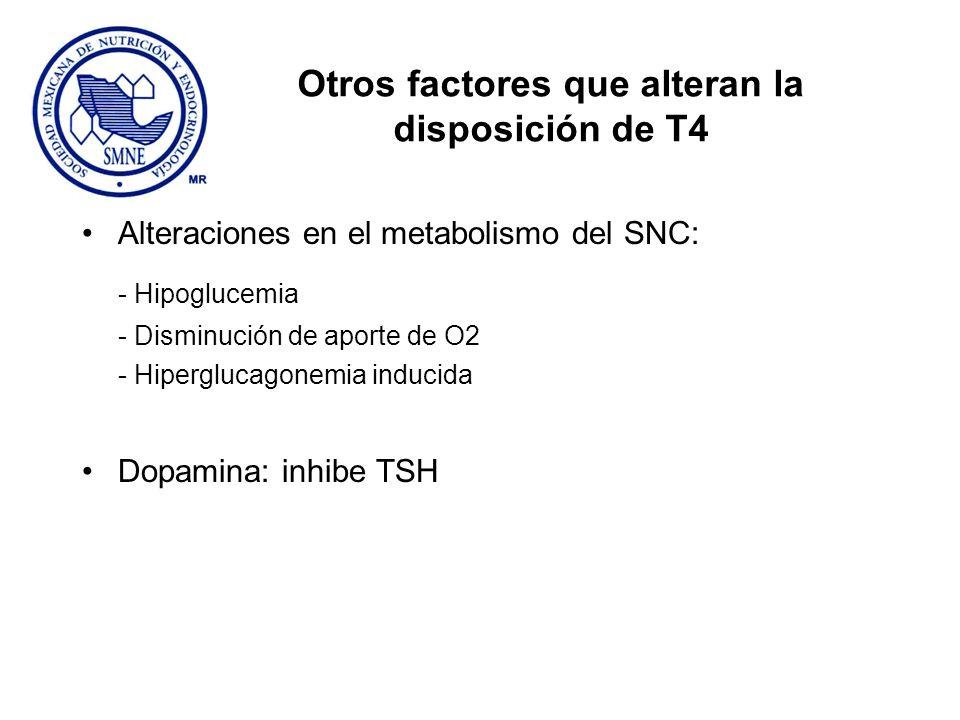 Otros factores que alteran la disposición de T4 Alteraciones en el metabolismo del SNC: - Hipoglucemia - Disminución de aporte de O2 - Hiperglucagonem