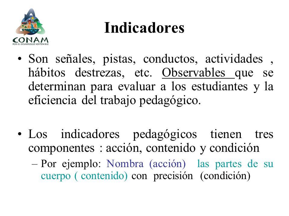 Indicadores Son señales, pistas, conductos, actividades, hábitos destrezas, etc. Observables que se determinan para evaluar a los estudiantes y la efi