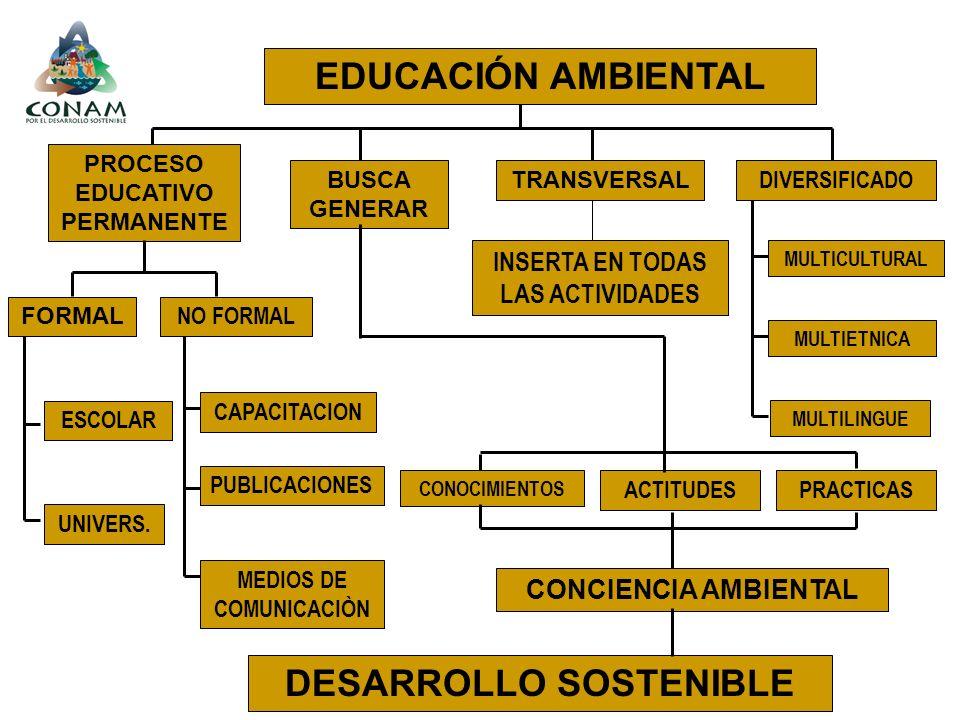 EDUCACIÓN AMBIENTAL PROCESO EDUCATIVO PERMANENTE TRANSVERSAL DIVERSIFICADO BUSCA GENERAR FORMAL NO FORMAL ESCOLAR UNIVERS. CAPACITACION MEDIOS DE COMU