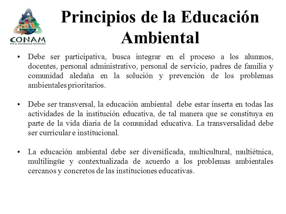 Debe ser participativa, busca integrar en el proceso a los alumnos, docentes, personal administrativo, personal de servicio, padres de familia y comun