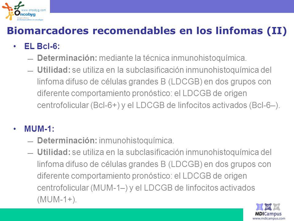 Biomarcadores recomendables en los linfomas (II) EL Bcl-6: Determinación: mediante la técnica inmunohistoquímica. Utilidad: se utiliza en la subclasif
