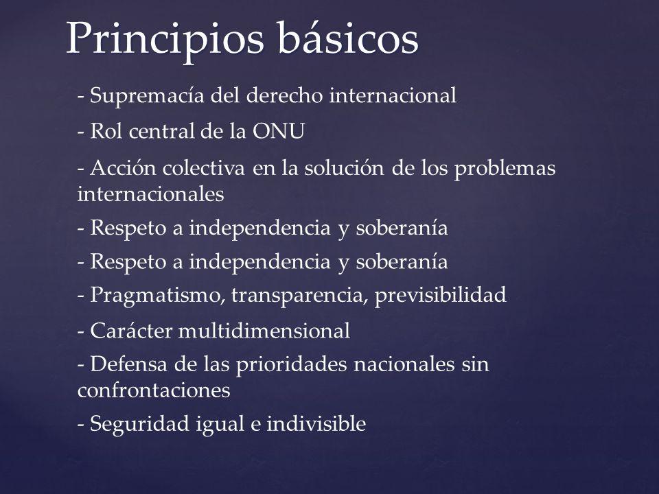 Principios básicos - Supremacía del derecho internacional - Defensa de las prioridades nacionales sin confrontaciones - Rol central de la ONU - Acción colectiva en la solución de los problemas internacionales - Respeto a independencia y soberanía - Pragmatismo, transparencia, previsibilidad - Carácter multidimensional - Seguridad igual e indivisible