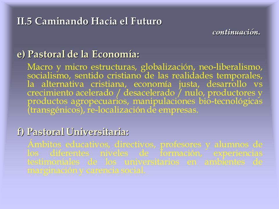 e) Pastoral de la Economía: Macro y micro estructuras, globalización, neo-liberalismo, socialismo, sentido cristiano de las realidades temporales, la
