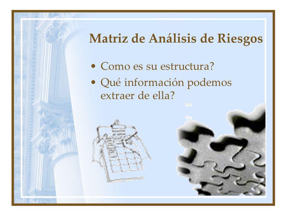 Matriz de Análisis de Riesgos Como es su estructura? Qué información podemos extraer de ella?