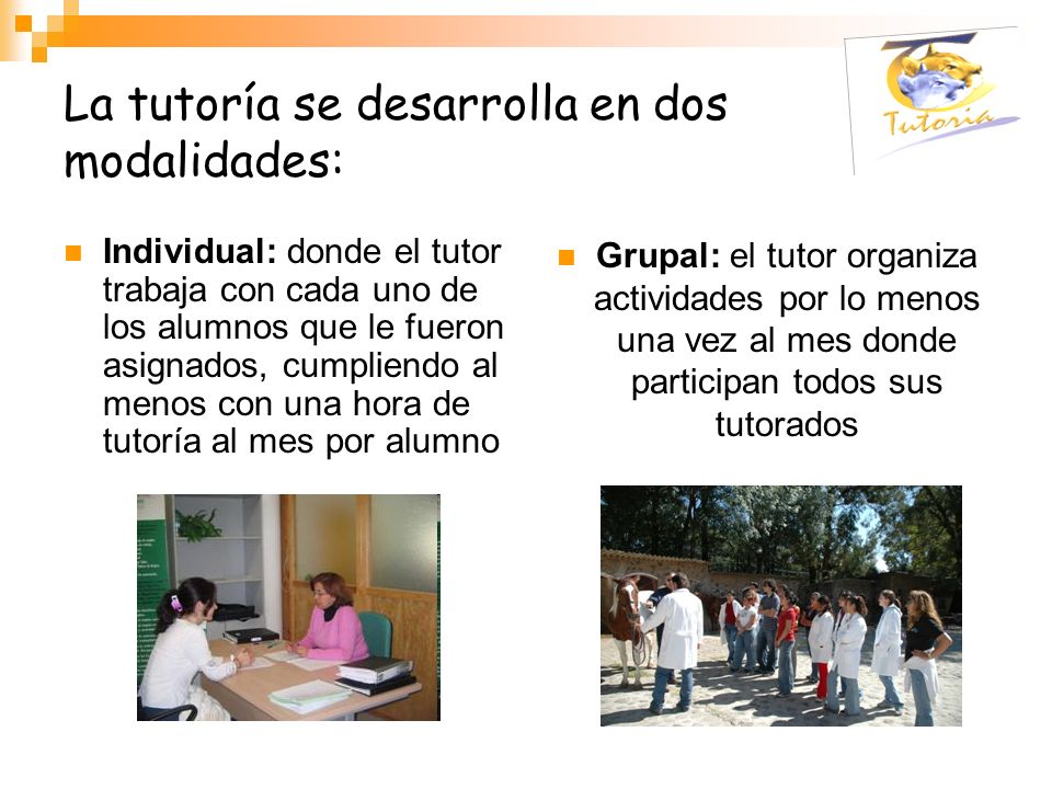La tutoría se desarrolla en dos modalidades: Individual: donde el tutor trabaja con cada uno de los alumnos que le fueron asignados, cumpliendo al men