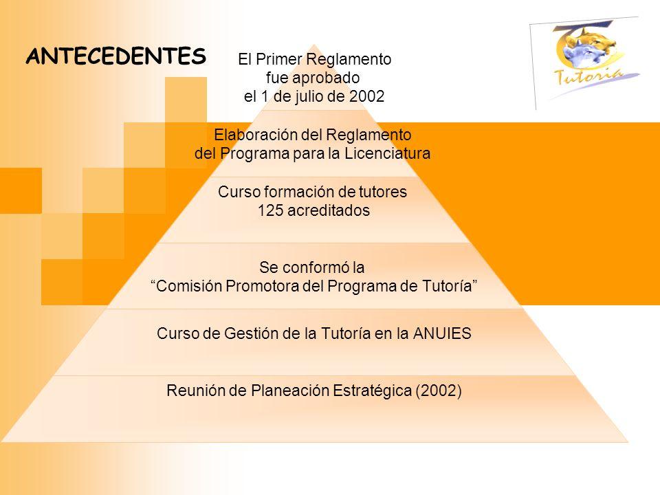 El Primer Reglamento fue aprobado el 1 de julio de 2002 Elaboración del Reglamento del Programa para la Licenciatura Curso formación de tutores 125 ac