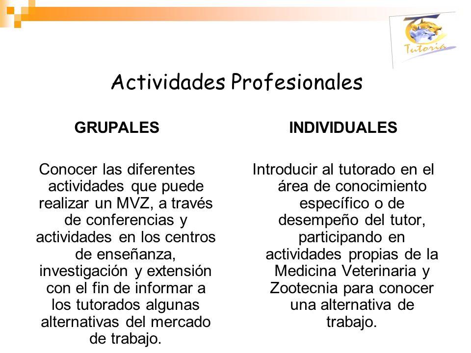 Actividades Profesionales GRUPALES Conocer las diferentes actividades que puede realizar un MVZ, a través de conferencias y actividades en los centros