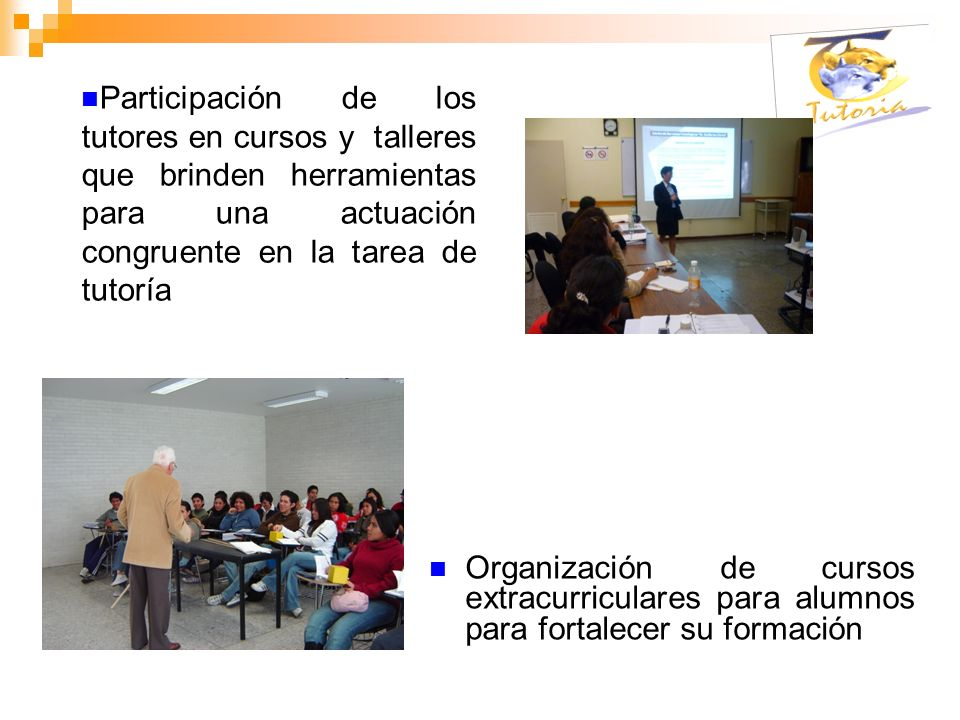 Organización de cursos extracurriculares para alumnos para fortalecer su formación Participación de los tutores en cursos y talleres que brinden herra