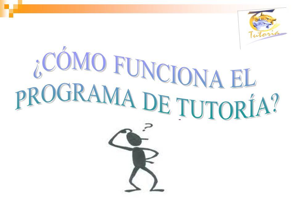 Coordinación del Programa