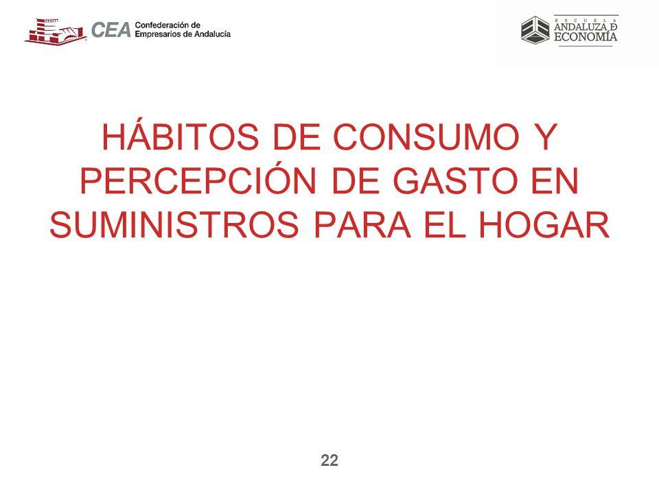 HÁBITOS DE CONSUMO Y PERCEPCIÓN DE GASTO EN SUMINISTROS PARA EL HOGAR 22