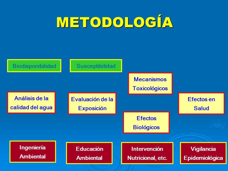 METODOLOGÍA Análisis de la calidad del agua Efectos Biológicos BiodisponibilidadSusceptibilidad Efectos en Salud Ingeniería Ambiental Educación Ambien