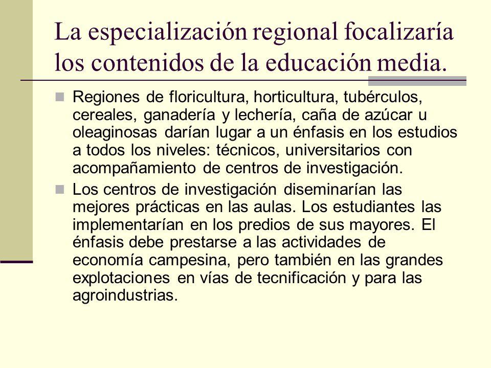 La especialización regional focalizaría los contenidos de la educación media. Regiones de floricultura, horticultura, tubérculos, cereales, ganadería