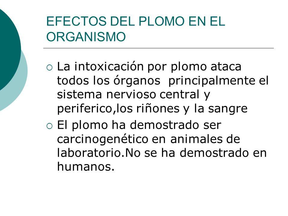 EFECTOS DEL PLOMO EN EL ORGANISMO La intoxicación por plomo ataca todos los órganos principalmente el sistema nervioso central y periferico,los riñone
