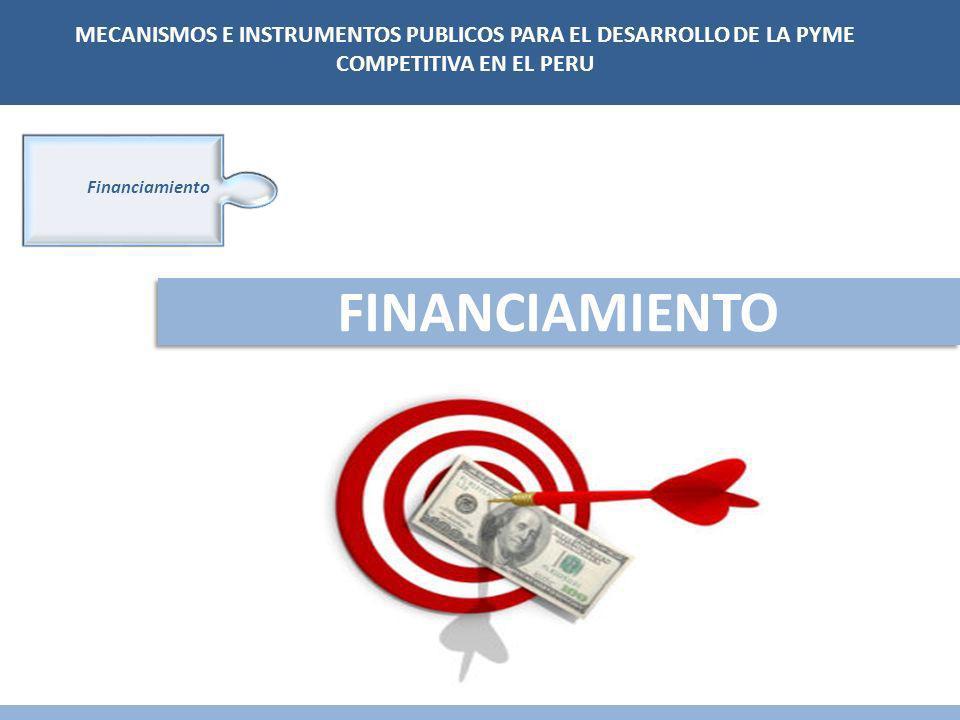 Financiamiento FINANCIAMIENTO MECANISMOS E INSTRUMENTOS PUBLICOS PARA EL DESARROLLO DE LA PYME COMPETITIVA EN EL PERU