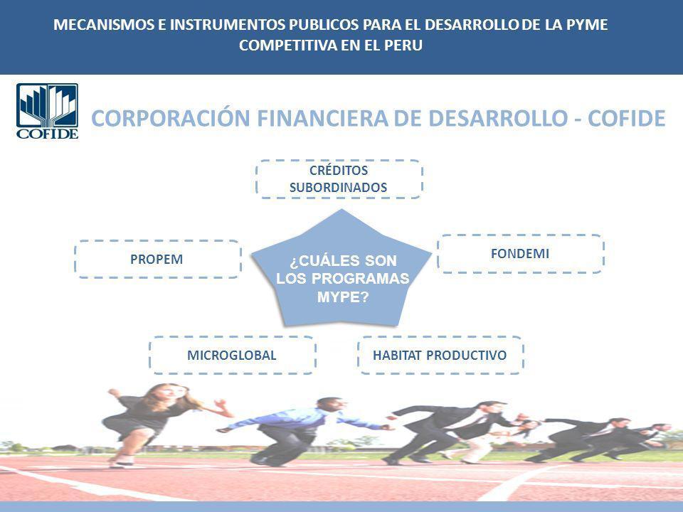 FONDEMI MICROGLOBAL PROPEM HABITAT PRODUCTIVO CRÉDITOS SUBORDINADOS CORPORACIÓN FINANCIERA DE DESARROLLO - COFIDE ¿CUÁLES SON LOS PROGRAMAS MYPE? MECA