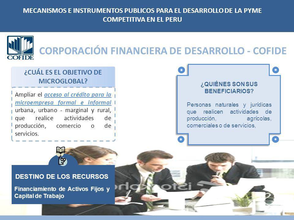 CORPORACIÓN FINANCIERA DE DESARROLLO - COFIDE ¿CUÁL ES EL OBJETIVO DE MICROGLOBAL? MECANISMOS E INSTRUMENTOS PUBLICOS PARA EL DESARROLLO DE LA PYME CO