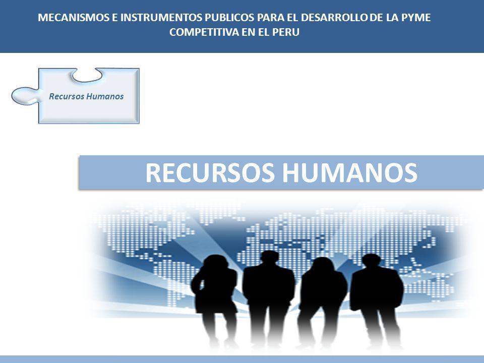 RECURSOS HUMANOS Recursos Humanos MECANISMOS E INSTRUMENTOS PUBLICOS PARA EL DESARROLLO DE LA PYME COMPETITIVA EN EL PERU