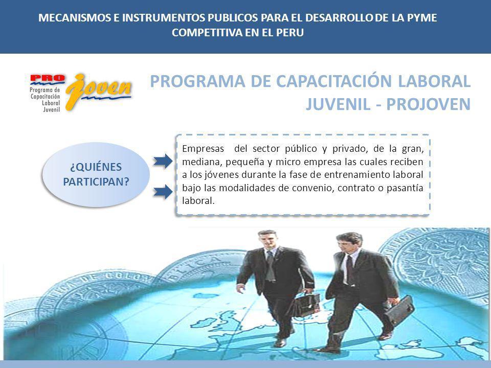 PROGRAMA DE CAPACITACIÓN LABORAL JUVENIL - PROJOVEN Empresas del sector público y privado, de la gran, mediana, pequeña y micro empresa las cuales rec