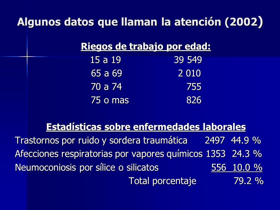 Algunos datos que llaman la atención (2002 ) Riegos de trabajo por edad: 15 a 1939 549 65 a 69 2 010 70 a 74 755 75 o mas 826 Estadísticas sobre enfer