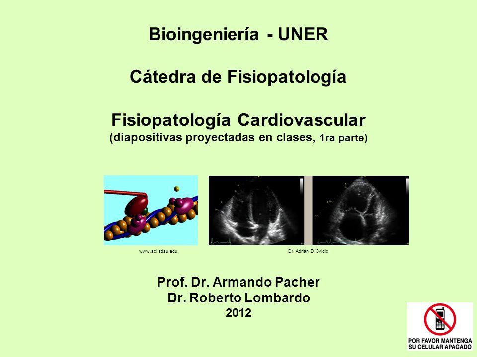 Bioingeniería - UNER Cátedra de Fisiopatología Fisiopatología Cardiovascular (diapositivas proyectadas en clases, 1ra parte) Prof. Dr. Armando Pacher
