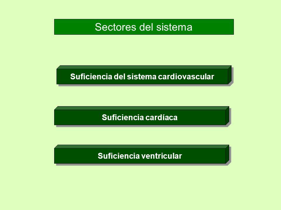 Sectores del sistema Suficiencia del sistema cardiovascular Suficiencia cardíaca Suficiencia ventricular