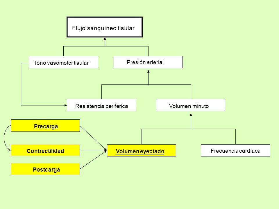 Flujo sanguíneo tisular Tono vasomotor tisular Presión arterial Resistencia periféricaVolumen minuto Volumen eyectado Frecuencia cardíaca Contractilid