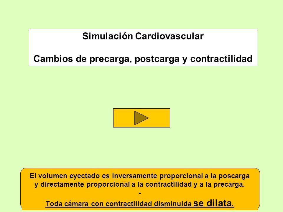 Simulación Cardiovascular Cambios de precarga, postcarga y contractilidad El volumen eyectado es inversamente proporcional a la poscarga y directament