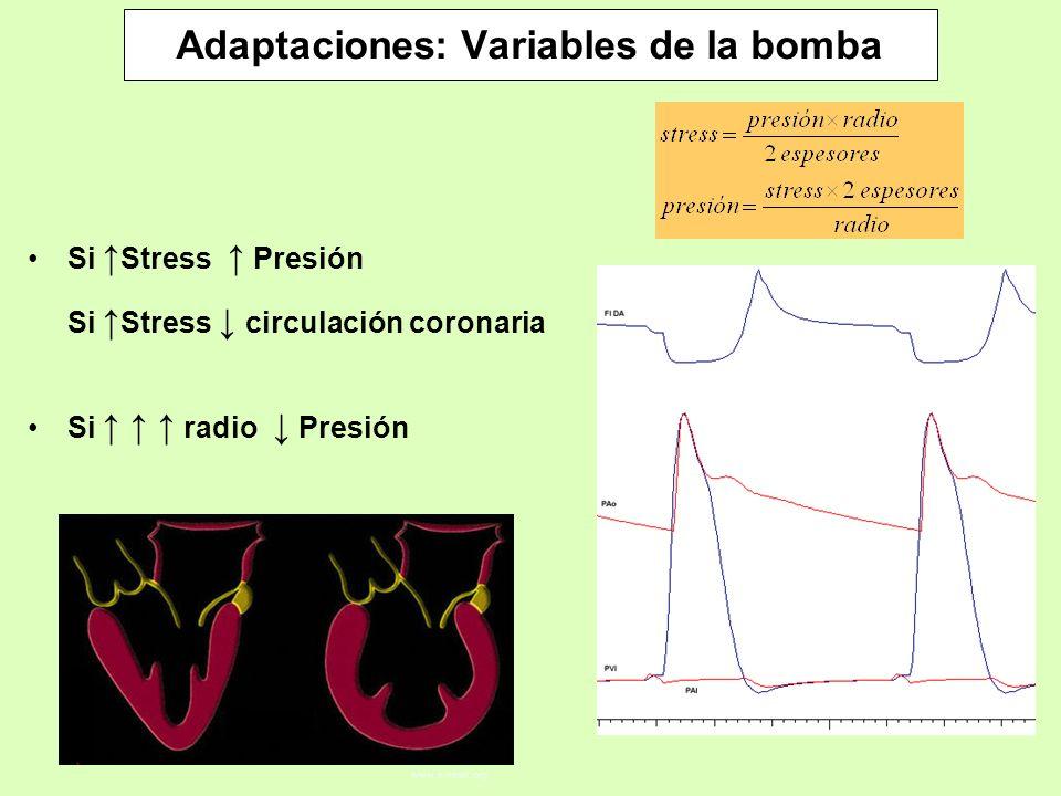 Adaptaciones: Variables de la bomba Si Stress Presión Si Stress circulación coronaria www.e.heart.org Si radio Presión