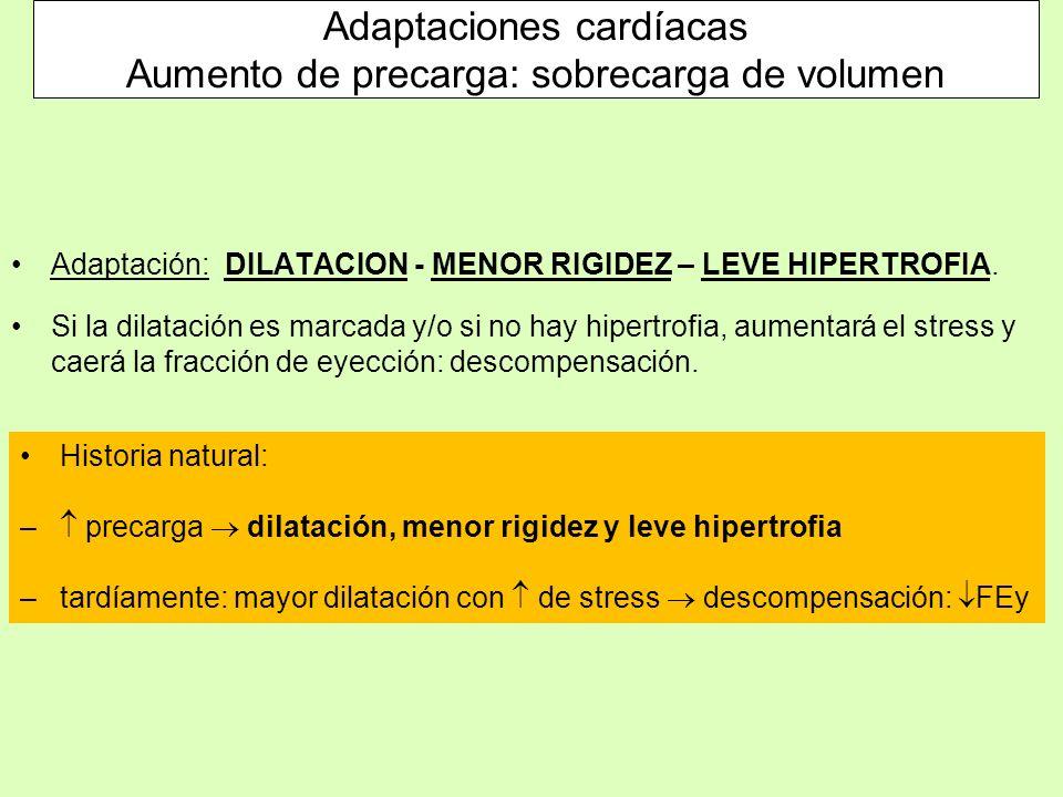 Adaptación: DILATACION - MENOR RIGIDEZ – LEVE HIPERTROFIA. Si la dilatación es marcada y/o si no hay hipertrofia, aumentará el stress y caerá la fracc