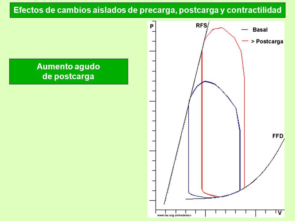Efectos de cambios aislados de precarga, postcarga y contractilidad Aumento agudo de postcarga