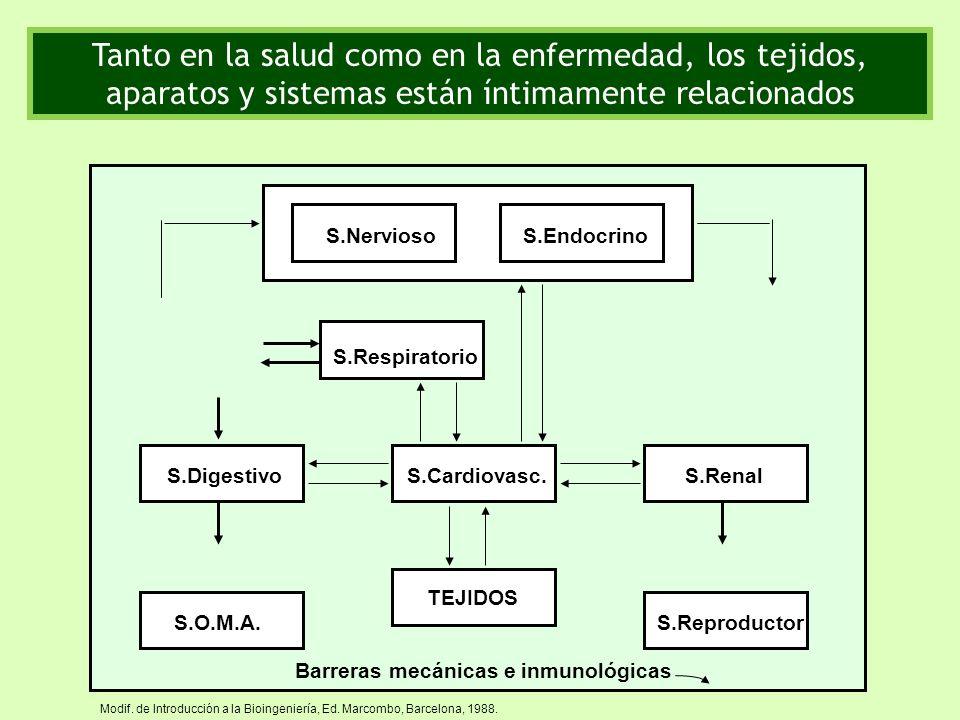 Modif. de Introducción a la Bioingeniería, Ed. Marcombo, Barcelona, 1988. Barreras mecánicas e inmunológicas TEJIDOS S.Cardiovasc.S.Digestivo S.Respir