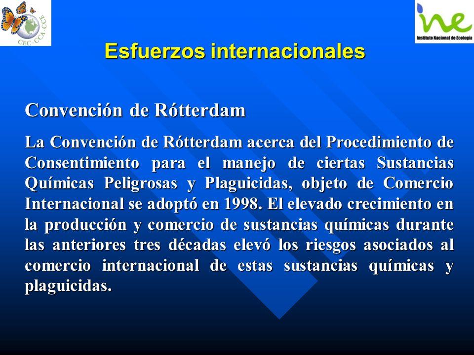 Esfuerzos internacionales Convención de Rótterdam La Convención de Rótterdam acerca del Procedimiento de Consentimiento para el manejo de ciertas Sust