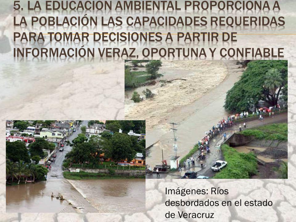 Imágenes: Ríos desbordados en el estado de Veracruz