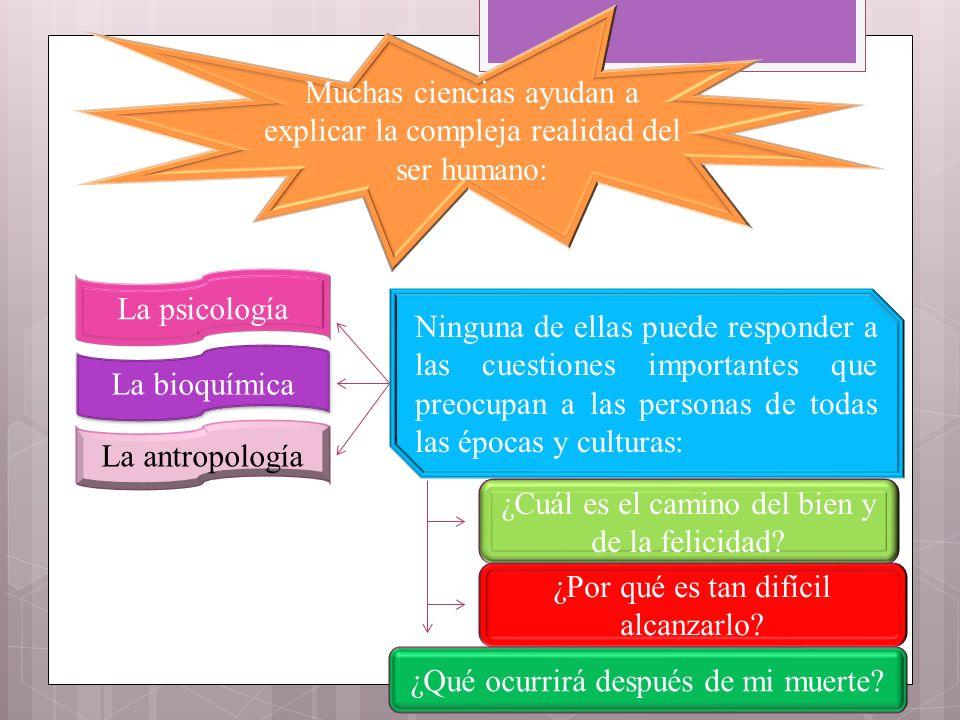 Muchas ciencias ayudan a explicar la compleja realidad del ser humano: La psicología La bioquímica La antropología Ninguna de ellas puede responder a