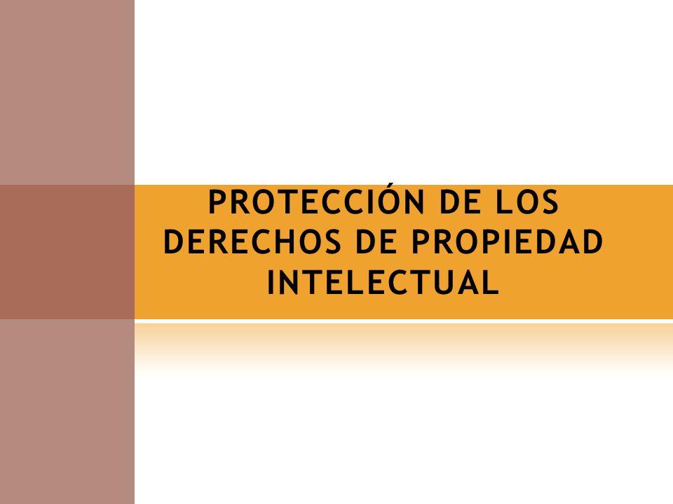PROTECCIÓN DE LOS DERECHOS DE PROPIEDAD INTELECTUAL