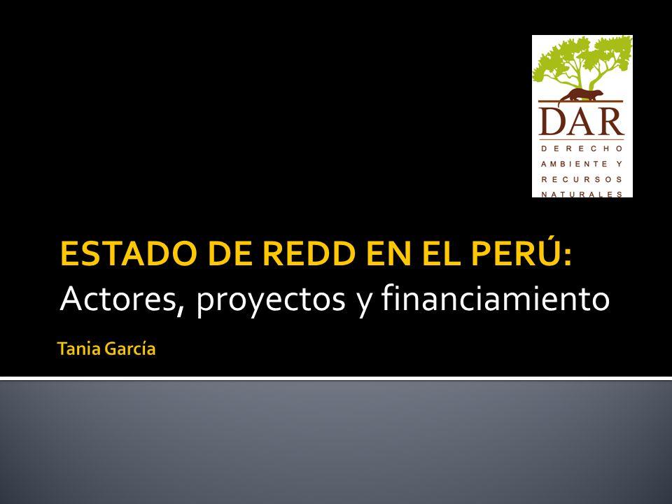 ESTADO DE REDD EN EL PERÚ: Actores, proyectos y financiamiento