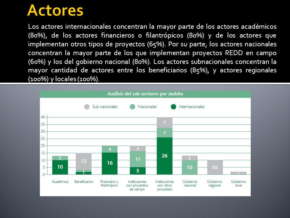 Los actores internacionales concentran la mayor parte de los actores académicos (80%), de los actores financieros o filantrópicos (80%) y de los actores que implementan otros tipos de proyectos (65%).