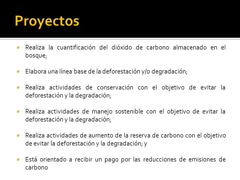 Realiza la cuantificación del dióxido de carbono almacenado en el bosque; Elabora una línea base de la deforestación y/o degradación; Realiza actividades de conservación con el objetivo de evitar la deforestación y la degradación; Realiza actividades de manejo sostenible con el objetivo de evitar la deforestación y la degradación; Realiza actividades de aumento de la reserva de carbono con el objetivo de evitar la deforestación y la degradación; y Está orientado a recibir un pago por las reducciones de emisiones de carbono
