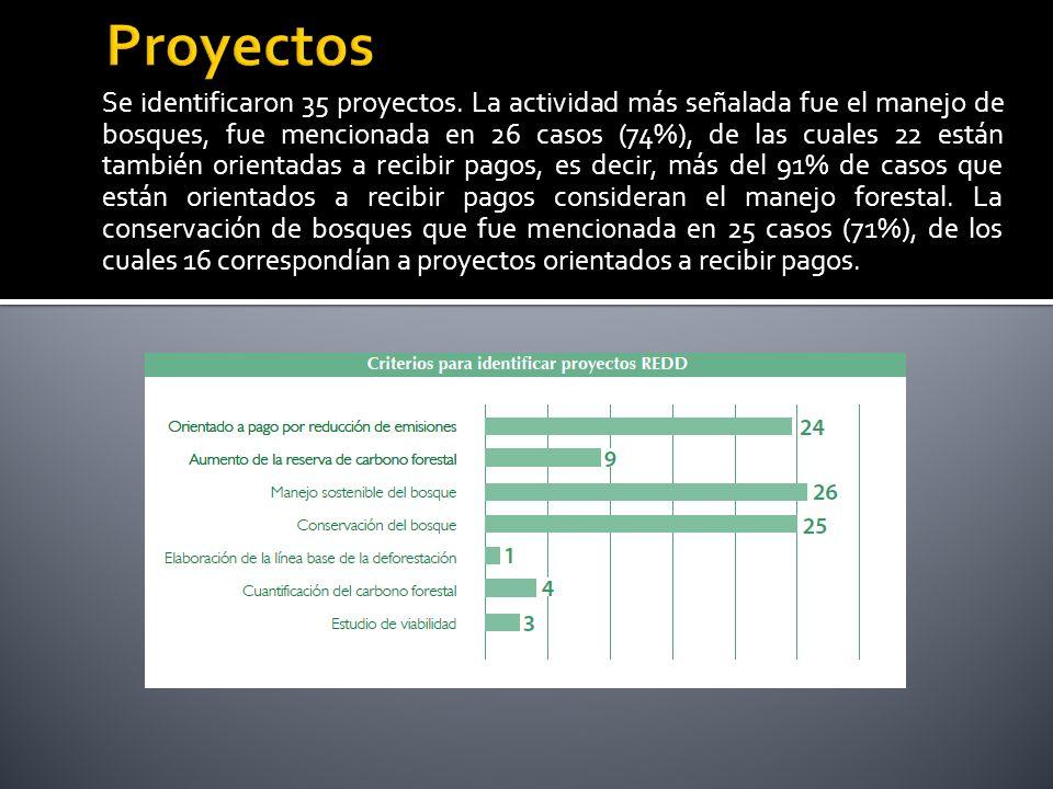 Se identificaron 35 proyectos.