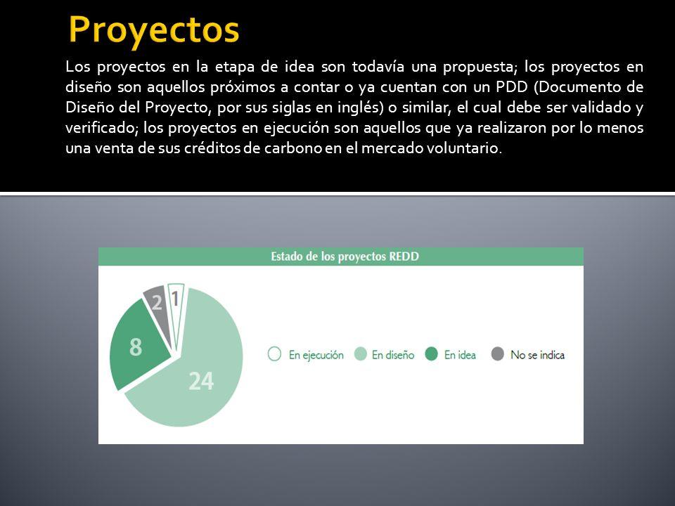 Los proyectos en la etapa de idea son todavía una propuesta; los proyectos en diseño son aquellos próximos a contar o ya cuentan con un PDD (Documento de Diseño del Proyecto, por sus siglas en inglés) o similar, el cual debe ser validado y verificado; los proyectos en ejecución son aquellos que ya realizaron por lo menos una venta de sus créditos de carbono en el mercado voluntario.